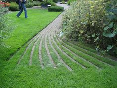 Mien was always looking for creative paving - this is like zebra, you can+  tell if the stripes are green or terracota - love it!