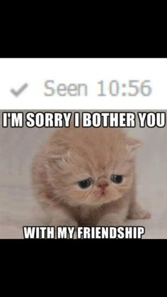 So cute. So sad. Yet funny all at the same time...