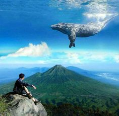 Look at this skywhale! - 9GAG