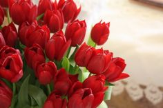 I JUST LOVE TULIPS SO MUCH.