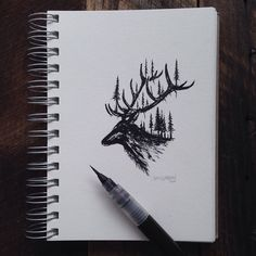 Sam Larson illustration from Instagram.