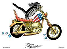 cycling kitty