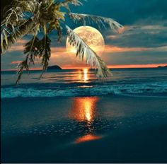 moonrise over the ocean Beautiful Moon, Beautiful Sunrise, Beautiful Beaches, Shoot The Moon, I Love The Beach, Beach Scenes, Tropical Paradise, Beach Pictures, Amazing Nature