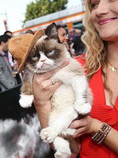 grumpy cat in a Pharrell's happy hat
