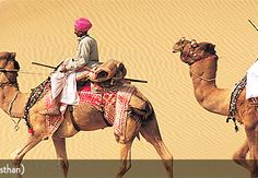Get full details and tour plan of luxury Rajasthan trips, luxury Rajasthan travel packages and royal rajasthan tours. Here you can find types of Rajasthan tours itinenaries and luxury rajasthan tours programs.