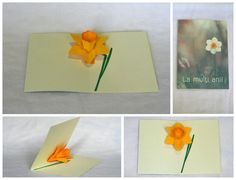 Pop up cards with flowers.