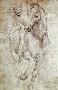 Leonardo da Vinci manages to capture the magnificent motion of a renaissance horse and rider in this stunning sketch. Add vigor to your decor with this adventurous print created by the most famous ren