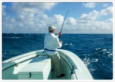 Proposition full and 0.5 day radio-controlled fishing charters in Miami and therefore the Miami Bay space.  http://www.fishingchartermiami.com