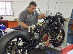 Boi trabalhando na montagem da moto