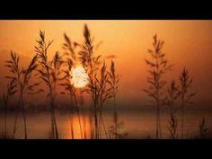 Χασαποσέρβικο - Γιάννης Μαρκόπουλος - YouTube Soundtrack, Singers, Greece, Music, Youtube, Greece Country, Musica, Musik, Muziek