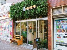 The owl cafe Tori no Iru in Tokyo