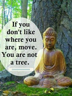 Top 100 Inspirational Buddha Quotes And Sayings - Page 2 of 10 - BoomSumo Quotes Buddhist Quotes, Spiritual Quotes, Wisdom Quotes, Positive Quotes, Life Quotes, Spiritual Health, Buddha Quotes Inspirational, Motivational Quotes, Funny Quotes