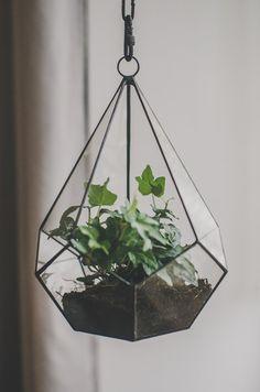 Kleine hängende Teardrop Terrarium saftigen Blumentopf