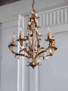 5灯シャンデリア IB081229 - アンティーク家具のAntiques *Midi【アンティークス ミディ】