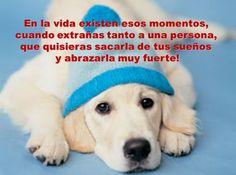 El amigo verdadero es el que siempre te echa de menos