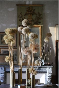 Little Land, Flower Installation, Desert Homes, Dark Interiors, Kitchen Witch, When I Grow Up, Illustrations, Planting Flowers, Floral Arrangements