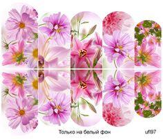 Слайдер-дизайн премиум, Цветы ufl97 - 1