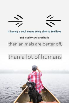 Animal Quote by James Herriot Soul Meaning, James Herriot, Feeling Loved, Animal Quotes, Essentials, Feelings, My Love, Animals, Animales
