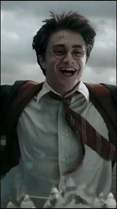 Harry Potter Gif, Young Harry Potter, Estilo Harry Potter, Mundo Harry Potter, James Potter, Harry Potter Pictures, Harry Potter Wallpaper, Harry Potter Characters, Daniel Radcliffe Harry Potter