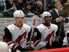 From breaking news and entertainment to sports and politics, get the full story with all the live commentary. Max Domi, Coyotes Hockey, Arizona Coyotes, Season Ticket, Sports, Art, Hs Sports, Art Background, Kunst