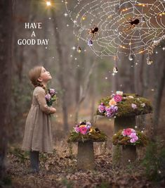 Cute Good Night, Good Day, Good Morning Flowers Gif, Big Spiders, Moving Photos, Gif Photo, Cards For Friends, Good Morning Quotes, Photography Photos
