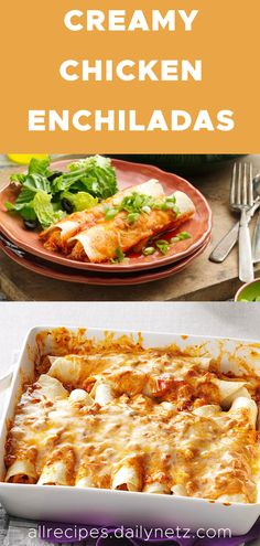 White Sauce Enchiladas, Cream Cheese Enchiladas, Enchiladas Healthy, Cream Cheese Sauce, Cream Cheese Chicken, Cream Cheese Recipes Dinner, Dinner Recipes, Philadelphia Recipes Chicken