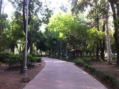El parque en Mexico City. Grande, verde, y tranquilo.