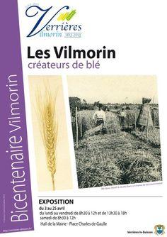 D'avril à septembre 2015, la saga du #blé à Verrières-le-Buisson (Essonne) http://www.pariscotejardin.fr/2015/04/d-avril-a-septembre-2015-la-saga-du-ble-a-verrieres-le-buisson-essonne/