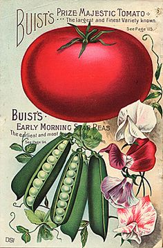 Back Cover    Company Name:  Buist Seed Company    Catalog Title:  Buist's Garden Guide and Almanac 1898 (1898)  Publication Information:  Philadelphia, PA  United States  Smithsonian Institution Libraries Catalog Number:  09480