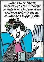 Maxine: When you're feeling stressed out, I think it helps to make a nice hot cup of tea and then spill it in the lap of whoever's bugging you. Feeling Stressed, Stressed Out, Just For Laughs, Just For You, Menopause Humor, Me Quotes, Funny Quotes, Sarcastic Quotes, Wtf Funny