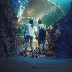 Aquarium Sea Life de Benalmadena, Malaga - Costa del Sol (Espagne)