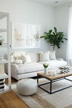 aménager-une-petite-chambre-grande-étagère-pouf-sofa-et-table-rectangulaire-tapis-clair-plante-verte