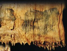 """Painting in Villars Cave known as """"The Horses Fresco"""""""