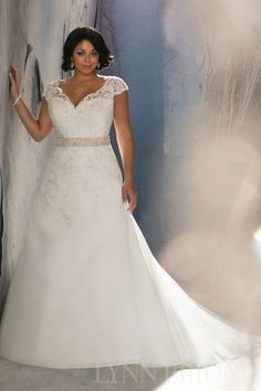 A Line V Neck Cap Sleeves Chapel Train Organza Lace Plus Size Wedding Dress