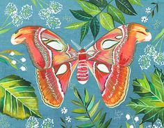 Moth by Katie Daisy on Etsy