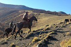 Baqueanos #TorresDelPaine #Patagonia