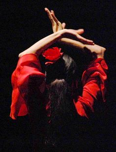 Flamenco, my passion! My Spanish roots from my ancestors.