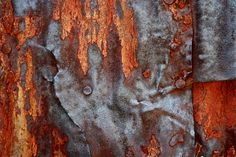 Abstract Fine Art Photography Industrial Rust Orange Red Rust, Red Head 8x12. $25.00, via Etsy.