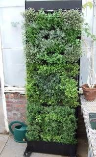 Living Walls by Trevor Smith : HGTV Gardens