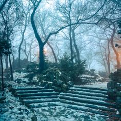 Bucharest Mist by Cristian Vasile on Bucharest, Romania, Mists, Places To Visit, Snow, Park, Landscapes, Outdoor, Paisajes
