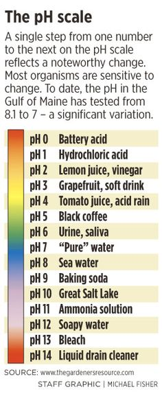 PH Chart for acids and bases OMG just went over acids and bases - ph chart