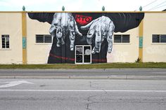 RUN SRQ : BERLIN hits Sarasota, Florida. by MTO (Graffiti Street art), via Flickr