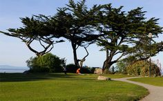 Lovers Point Park and Beach is Pacific Grove's most popular spot for shoreline recreation. It's a great place for a picnic!