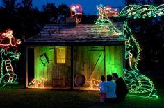 GoNOLA's Celebration in the Oaks: New Orleans Holiday Tradition Twinkles