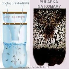 zdrowie.hotto.pl-skuteczna-pulapka-na-komary-domowy-sposob-na-komary-DIY House Insects, Concrete Patio, Diy Cleaning Products, Life Savers, Home Hacks, Pest Control, Good To Know, Diy And Crafts, Diet