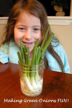 Regrowing green onions!
