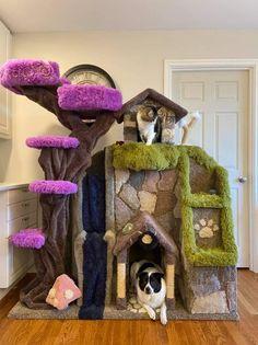 Animal Room, Animal House, Cat Castle, Diy Cat Tree, Dog Tree, Cat Tree House, Cat Towers, Cat Enclosure, Forest Cat