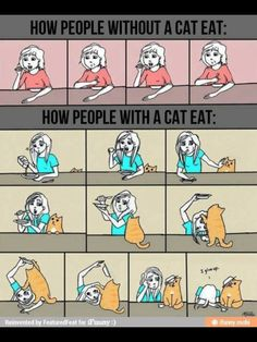 Hahahhahahaha