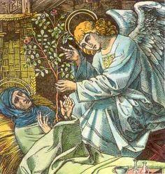 Lidwina van Schiedam.  < 1500. Ingekleurde houtgravure. Duitsland(?), in Läpple: 'Mit den Heiligen...'. Een engel reikt Lidwina een rozenstruik aan, tegelijk symbool van haar liefde en haar lijden.