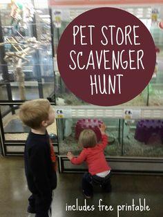 Toddler Approved!: Pet Store Scavenger Hunt
